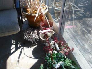Approx 16pcs  flower pots  various sizes