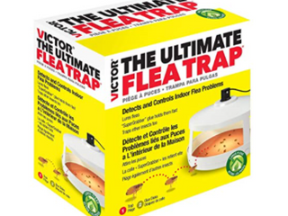 Victor The Ultimate Flea Trap