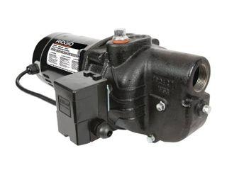 RIDGID 3 4 HP Cast Iron Shallow Well Jet Pump
