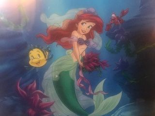 Nice framed Disney little mermaid beautiful colors would be great in kids room 15 x 20 frame