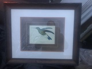 Beautiful bird picture framed and matted 18 x 20