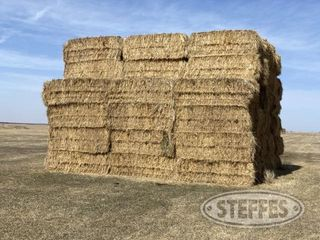 Mike Pence Hay Auction