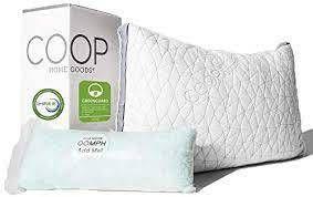 Coop Home Goods Eden King 1 2lB Bag of Fill SET OF 2
