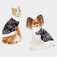 Spiderweb Halloween Dog Sweater   M