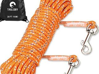 Taglory Dog Tie Out  long leash for Puppy Dog Training  30 FT Nylon Rope with Reflective Stitching for Small Dogs  Great for Swimming  Walking  Camping  Orange