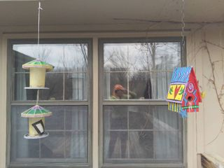 lot of 2 Bird Houses Feeders   Bright Red Blue and Yellow Wooden Bird House and Plastic Stain Glass look Alike Bird Feeder