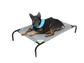 The Original Coolaroo Elevated Pet Dog Bed for Indoors   Outdoors  Medium  Gray
