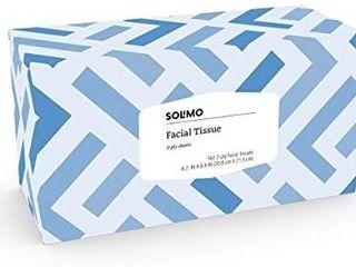 Solimo Facial Tissues  160 Tissues Per Box  10 Flat Boxes