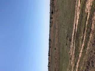 NOBLE COUNTY GRASS LAND AUCTION-Red Rock OK Area