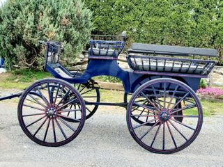 Pony Auction