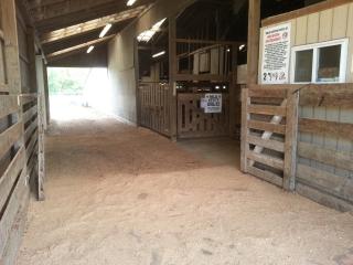 Mercer Livestock Auction & Events Center