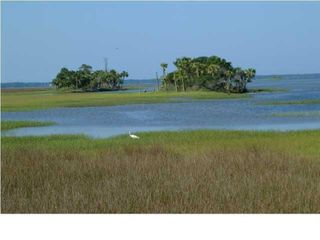 Real Estate Auction - Shallow Reed On The Bay Lots - Port St. Joe - Florida