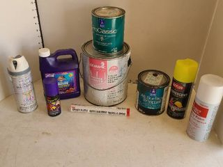 Assorted paint items