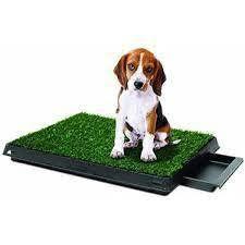 Pet Potty Pet Park Deluxe Dog Relief System