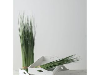 Onion Grass Bundle   Retail   48 59