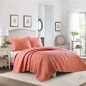 Coral Solid Quilt Set  King    laura Ashley