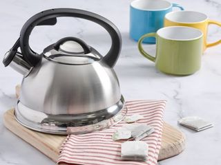 Mr  Coffee 91407 02 Flintshire Stainless Steel Whistling Tea Kettle  1 75 Quart