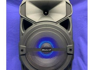 Studio Z STZP 800 8 Inch Rechargeable Speaker Woofer with USB Music Stream