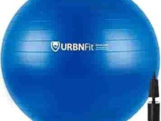 Amazon asics Balance Ball With Foot Pump   65cm  Blue