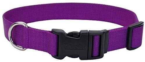 3 4 Inch Nylon Adjustable Dog Collar  Medium  Purple