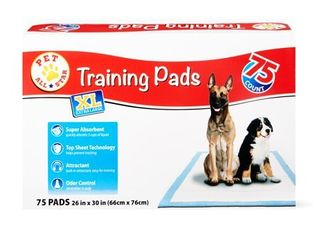 Shop Pet All Star Dog Training Supplies
