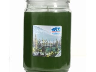 Brand NEW scented candle Mainstays Alpine Forest Single Wick 20 oz  Jar Candle