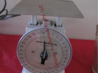 Detecto food scale