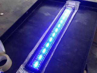 NICREW ClassiclED Aquarium light  Fish Tank light with extendable Brackets  White   Blue lEDs  Retails 39 99