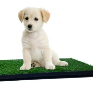 Petmaker Grass Mats  Set Of 3 Turf Pads For Puppy Potty Trainer Tray System N
