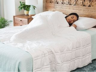 Organic Weighted Blanket Plush organic weighted blanket for deeper  more restful sleep 15 lb Retail price  295 00