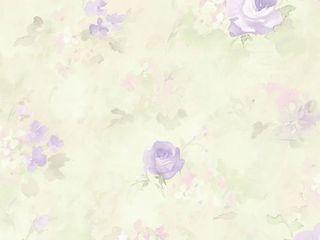 Morning Dew Wallpaper