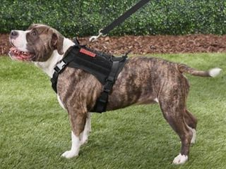 Tactical Vest for Dogs
