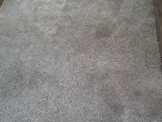 Area Rug  9 ft  x 6 ft