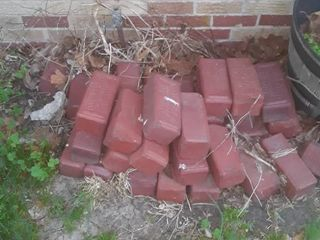 Approximately 40 Red Bricks