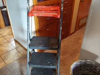 Cosco Painting ladder