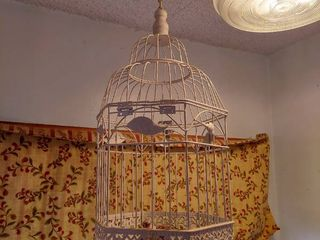 Hanging Decor   Bird Cage and Fuax Plant