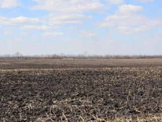 477.91 +/- Acres - Grand Forks County, ND