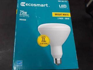 4PK ECOSMART 75 Watt Equiv BR40 Dimmable lED light Bulb Bright White  2 Pack