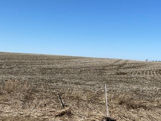225.72 +/- Acre Land Auction, Brookings Co., SD