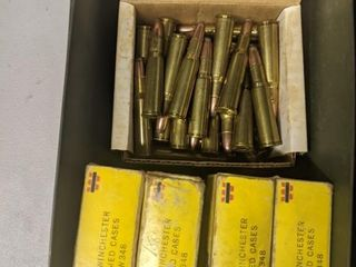 348 Winchester Ammunition
