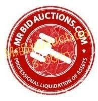 313 Surplus & Consignment Auction