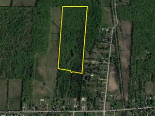 Online Auction - 28 Acres of Vacant Land in Montrose, MI