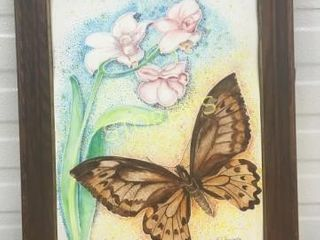 Butterfly Picture   signed