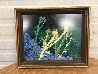 Framed Signed Flower Picture