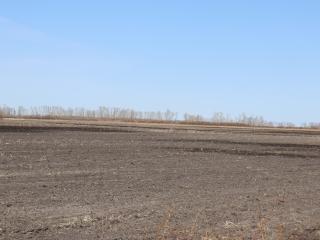 320 +/- Acres - Marshall County, MN