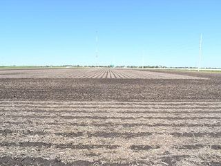 Hancock County, IL Land Auction - Whewell