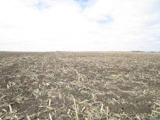 154+/- Acre Land Auction * Floyd County, IA