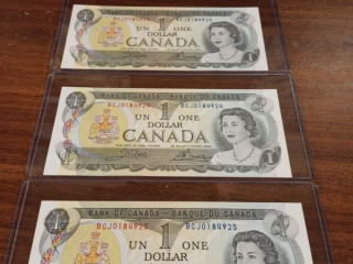 Gananoque Downsizing Online Auction - King street east