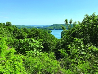 7.37+/- ACRES � WOODLAND � DALE HOLLOW LAKEVIEW � UNRESTRICTED