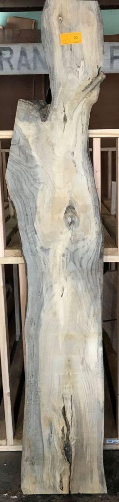 Auction Exotic Wood Live Edge Salbs
